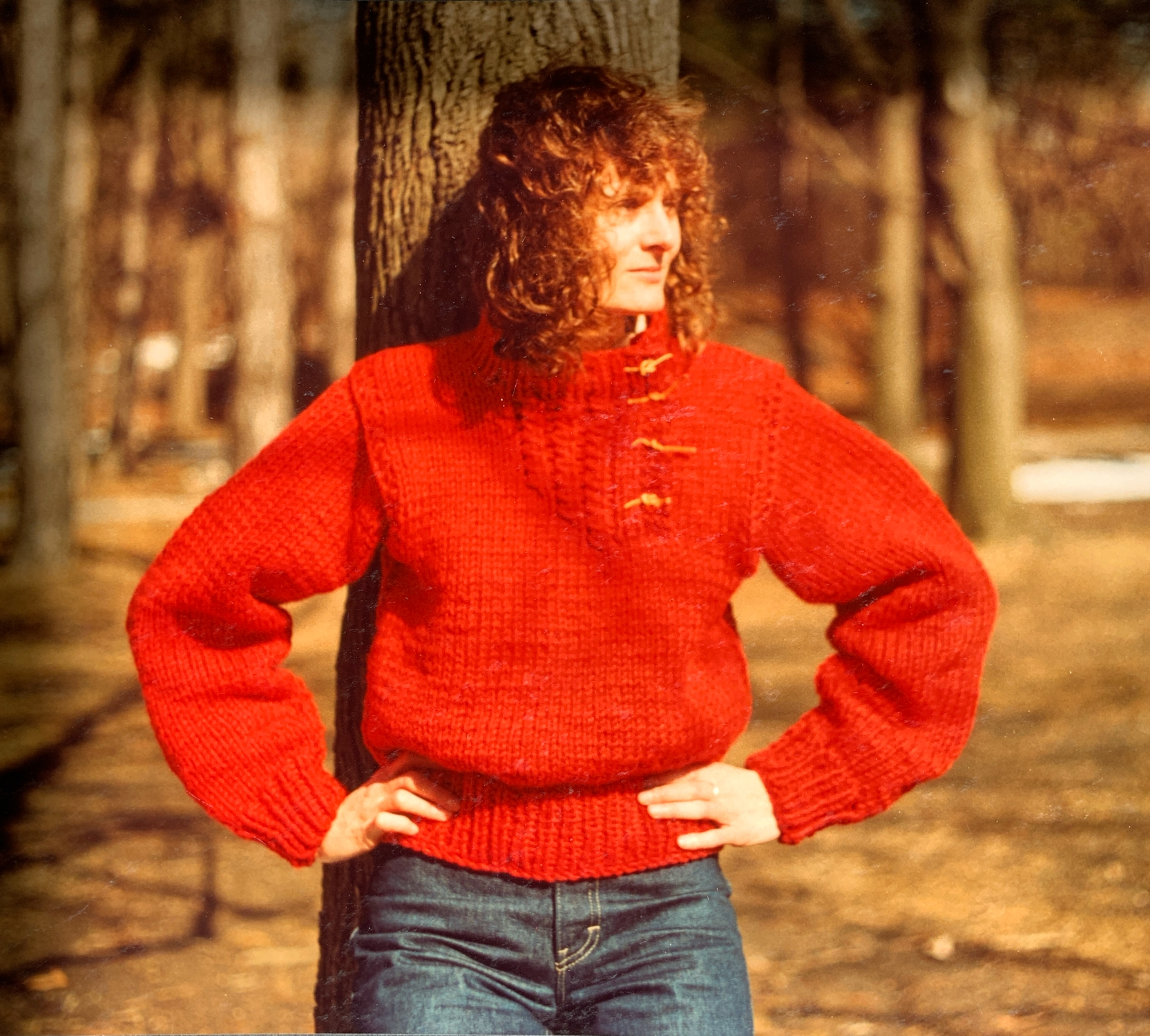 The Finished Red Rug Wool pullover.